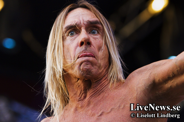 Iggy & The Stooges river Grönan