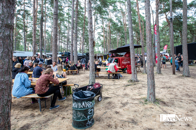 Oland_roots_2019_03